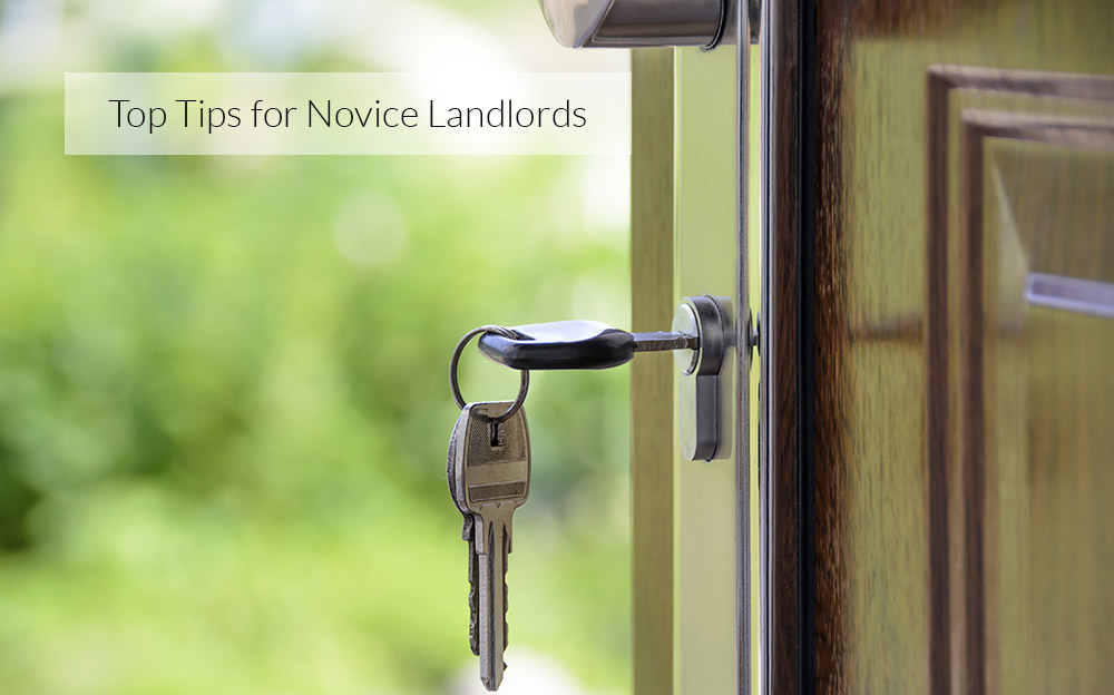Top Tips for Novice Landlords